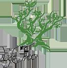 web_logo_lifetree